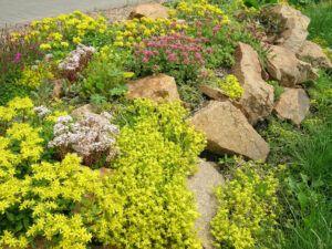 kvetinova-zidka navod