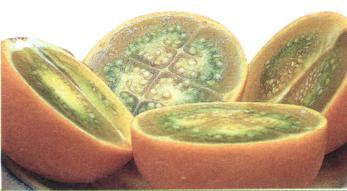 Chlupatý pomeranč