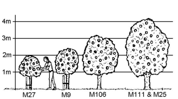 Podnož M9, M26, M106, M111