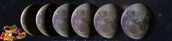 Lunární kalendář na zahrade