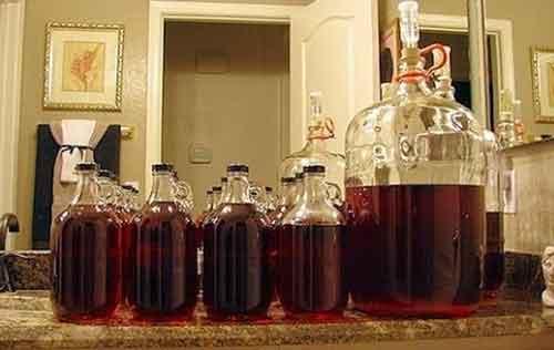 kvašení vín