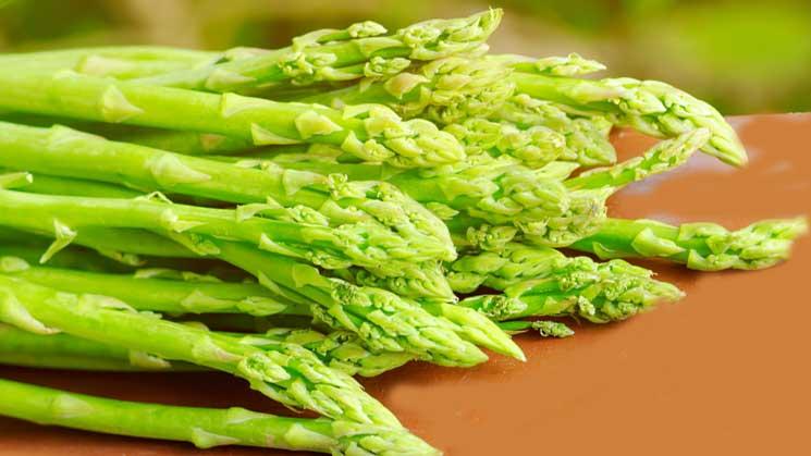 Chřest obecný (Asparagus oíficinalis)
