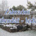 Leden na zahradě. | Zahradní kalendář leden.