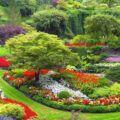 Okrasné rostliny na zahrade