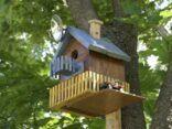Ptačí budky v zahradě