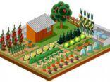 význam základních živin